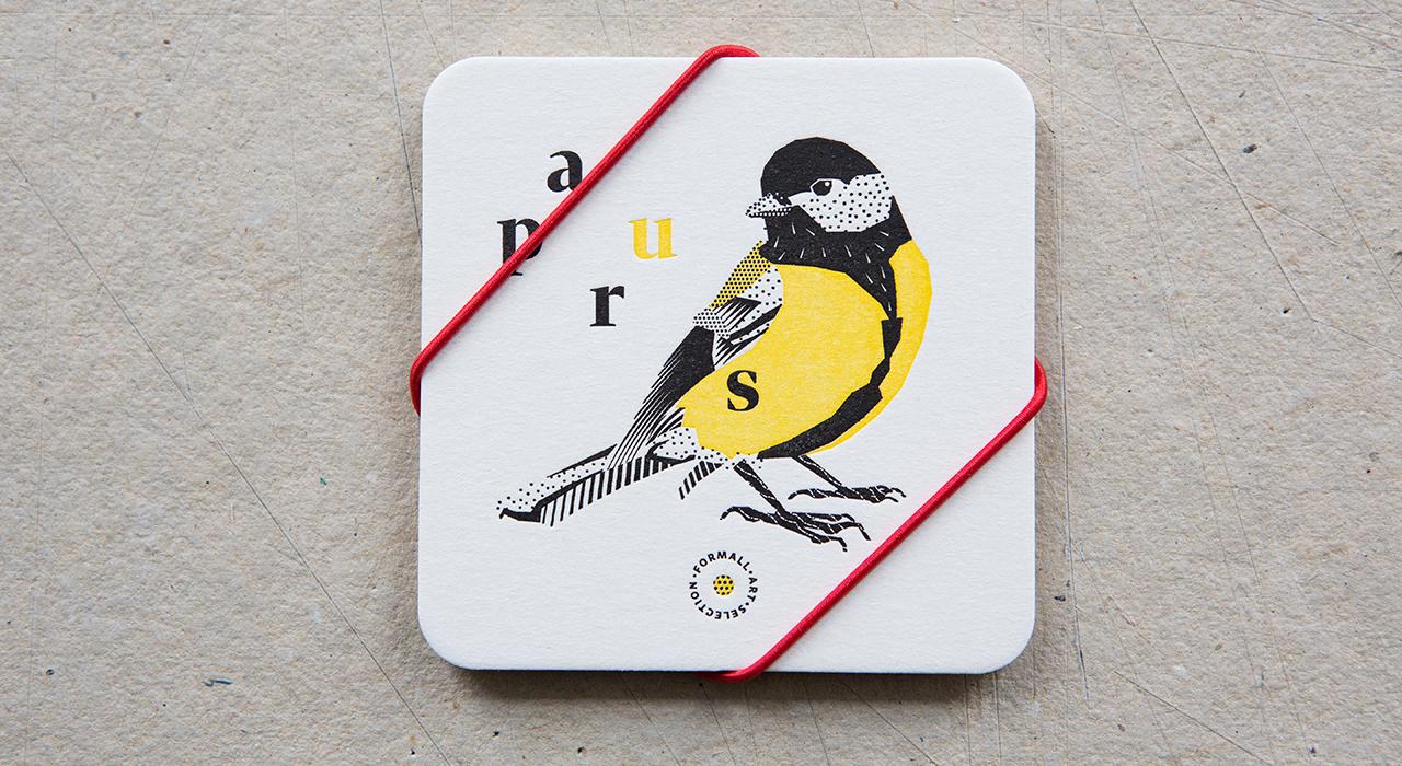 passeriformes-tacky-05